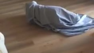 What strange creature has entered this bedroom? - Video