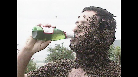 Drinking Beer Covered In Bees