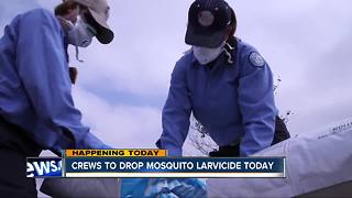 Crews to drop mosquito larvicide in parts of San Diego County - Video