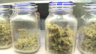 Indian River County Commission says no to medical marijuana dispensaries - Video