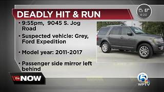 Deputies search for driver in deadly hit and run on S. Jog Road - Video
