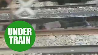 Heart-stopping moment a man was run over by a heavy good train - Video