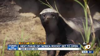 Next phase of 'Africa Rocks' set to open - Video