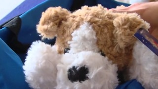 Packing ' Confort Cases' for foster children