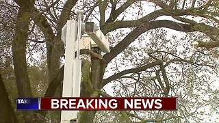 Tree trimmer dies after fall while cutting trees at Detroit home - Video