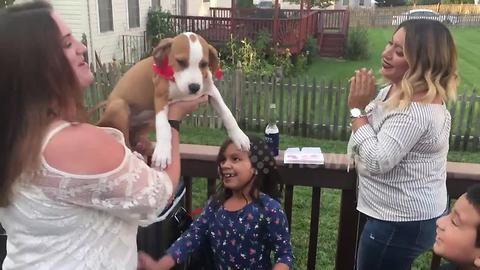 Woman receives rescued puppy as birthday present