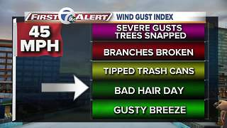 7 First Alert Forecast 010217 - Video