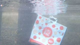 'Reusable' Coles Plastic Bag Drifts by a Tiny Seahorse in the Ocean