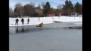 Firefighter Crawls Across Frozen Lake to Rescue Dog