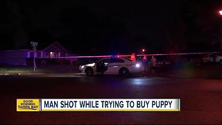 Florida man shot, killed in front of kids while buying puppy through Facebook ad - Video