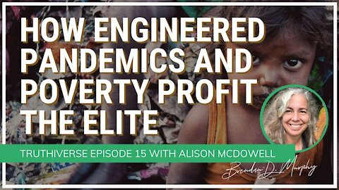 How Engineered Pandemics & Poverty Profit the Elite: Enter the Great Reset - with Alison McDowell