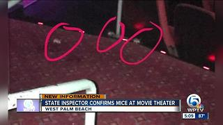 State Inspector confirms mice at CityPlace movie theater - Video