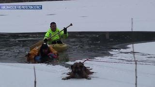 WATCH: Firefighter rescues dog that fell through ice on frozen lake - Video
