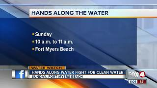 'Hands Along the Water' rally for clean water and wildlife - Video