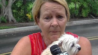 Palm Beach County firefighter rescues woman, dog after car crashes into Wellington lake