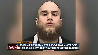 Man arrested for allegedly attacking grandma at Tampa dog park