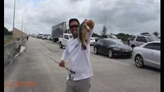 Friends go fishing while stuck in traffic