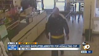 Accused shoplifter arrested for assaulting cop - Video