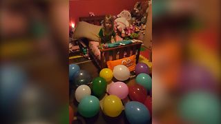 Unhappy Birthday Surprise - Video