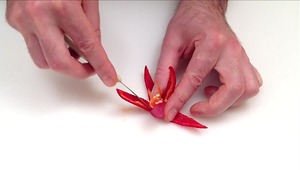 How to make flowers with peppers, leeks and scallions - Video