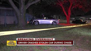 Police capture man who shot at Tampa officers after crashing car stolen during an armed carjacking
