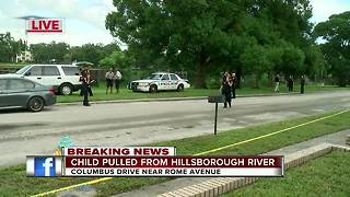 Divers pull child from water after witness reports seeing woman throw child off bridge in Tampa - Video