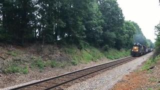 Dog Miraculously Survives Being Hit By Train - Video