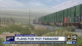 "We're taking a look at the plan for ""Pot Paradise"" in Nipton, California"