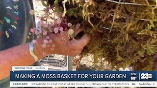 Growing Your Garden: Making a moss basket