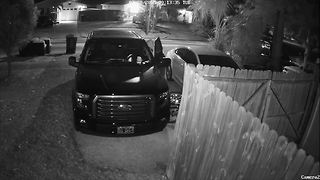 Home surveillance camera catches thief stealing gun from truck - Video
