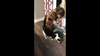Girl, mini horse and cat share beautiful friendship - Video