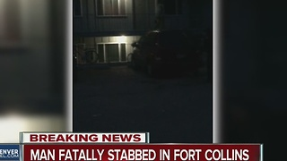 Good Samaritan attempting to help woman stabbed to death in Fort Collins - Video