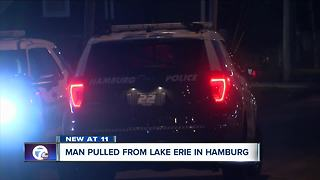 Man pulled from Lake Erie in Hamburg - Video