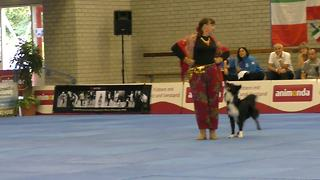 Border collie and owner wow audience with captivating routine at Dog Dance World Championships - Video