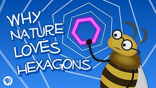 S4 Ep43: Why Nature Loves Hexagons (featuring Infinite Serie - Video