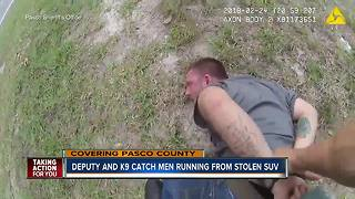 Pasco Co. deputy and K9 chase down stolen vehicle suspects - Video