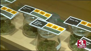Medical marijuana, gambling likely headed to Nebraska ballot