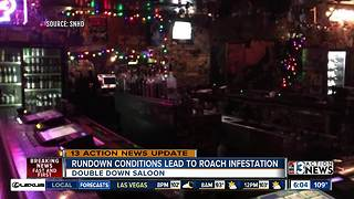 Double Down Saloon closed because of conditions