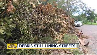 Debris still lining streets of Tampa Bay Area