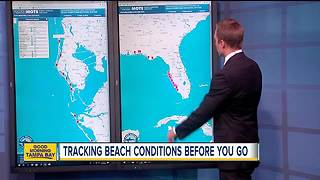 Check Florida beach conditions before you go - Video