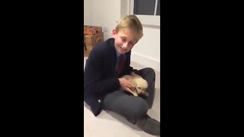 Kid receives surprise puppy after 5 years of waiting