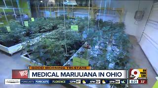 Insider Report: Where do Cincinnati doctors stand on prescribing medical marijuana? - Video