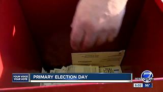 Colorado votes in 2018 primary elections - Video