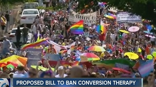 Proposed bill to ban conversion therapy - Video
