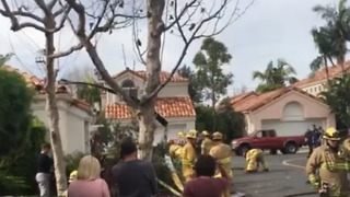 Emergency Services Respond to Helicopter Crash in Newport Beach - Video