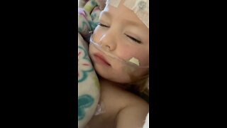 Toddler recovering after falling into back yard pool