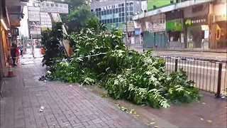 Debris and Fallen Trees Strewn About Hong Kong As Typhoon Hato Hits - Video