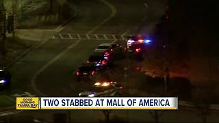 2 stabbed at Macy's in Mall of America during 'interrupted theft'