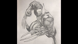 Wolverine Drawing Time-Lapse
