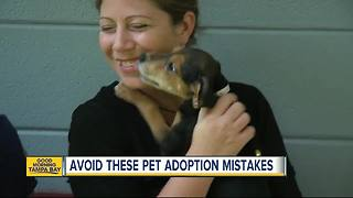 Local animal shelters waiving adoption fees this weekend - Video